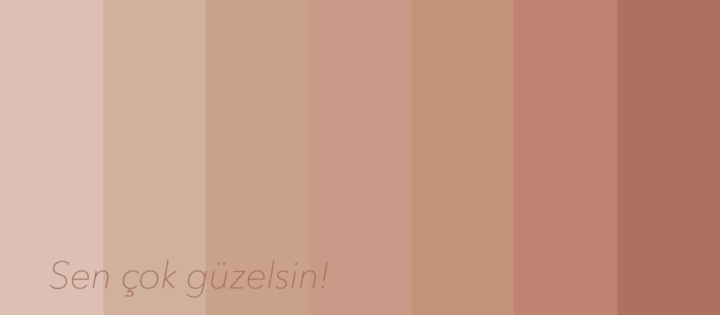 data/banner/NudeColor.png